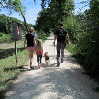 Auf dem Spaziergang gibt es eine Lektion in Hunde-Kunde