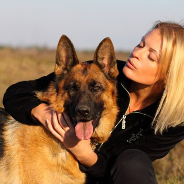 Beziehung-und Erziehung beim Hund – Führungsqualitäten sind ein Muss!