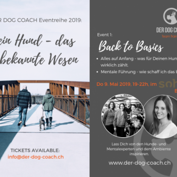 9. Mai 2019 | 1. Event – Back to Basics