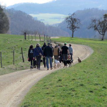 Sozialer Walk statt soziale Medien