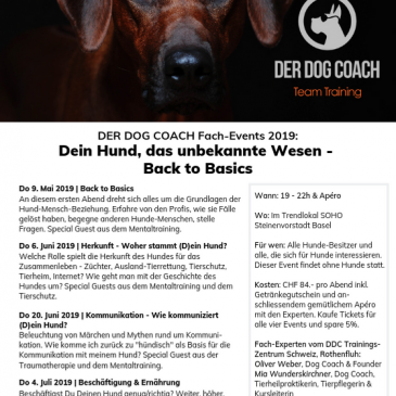 Start der Fach-Eventreihe 2019: BACK TO BASICS