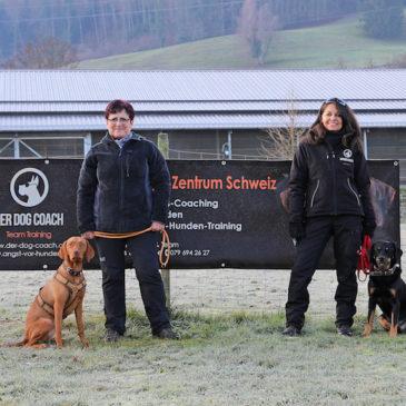 NEU: Hochwertiges, regionales Hundefutter mit Schweizer Fleisch