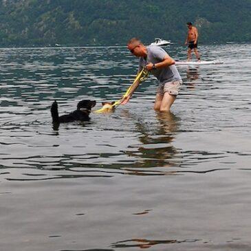 Schwimmunterricht für Jacky